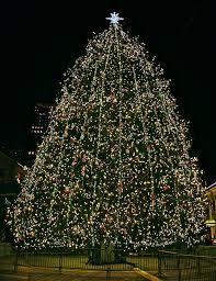faneuil hall christmas tree lighting. Faneuil Hall Marketplace Tree \u2013 November Christmas Lighting