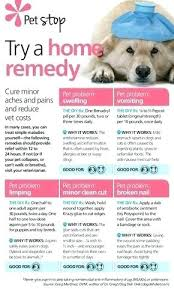 Dog Friendly Over The Counter Medications Chart Over The Counter Meds For Dogs Ambbarees Me