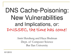 Ppt Dns Cache Poisoning New Vulnerabilities And