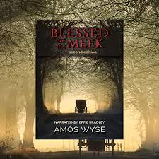 Blessed are the Meek by Amos Wyse | Audiobook | Audible.com