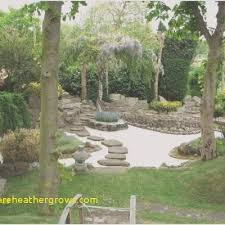 Home Garden Design Plan Cool Inspiration Ideas
