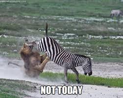 Not Today - WHAT'S MEME ? via Relatably.com