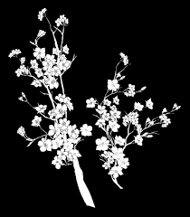 tumblr transparents black and white flowers. Plain Tumblr Flower Drawing Png Tumblr Image About Love In Free Download In Tumblr Transparents Black And White Flowers