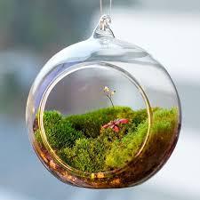 terrarium ball globe shape clear hanging glass vase flower plants terrarium container micro landscape diy wedding