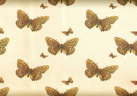 Butterfly Patterns Classy Butterfly Pattern With An Antique Touch