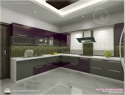 Small Picture kerala home design floor plans kitchen interior views ss kitchen
