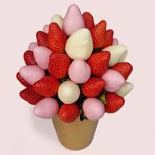 strawberry chocolate fusion