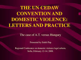 The Un Cedaw Convention And Domestic Violence Letters And