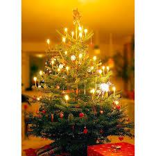 ... Christmas Tree