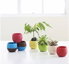 office deco. Wholesale Mini Plastic Flower Pot Succulent Plant Flowerpot For Home Office Deco