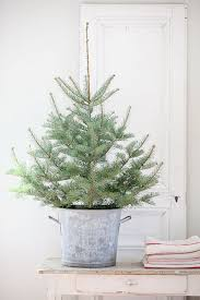 Simple small Christmas tree in galvanized bucket. Dreamy Whites: French  Farmhouse Christmas Items in the Shop, Wintersteen Farms Wreaths, and a  Container ...