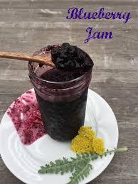 apple vinegar. post image for blueberry red apple vinegar jam
