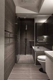 bathroom remodel ideas modern. Bathroom , Modern Small Design Ideas : With Slate Tiles And Remodel