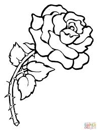 Disegno Di Rosa Con Spine Da Colorare Disegni Da Colorare E Con Rosa