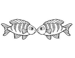Small Picture Rainbow Fish Kissing Coloring PageS Rainbow Fish Kissing Coloring