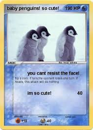 real baby penguins pictures. Fine Pictures Pokemon Baby Penguins So Cute Throughout Real Baby Penguins Pictures