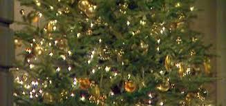 Rockefeller Center Christmas Tree Arrives In NYC  NJcomChristmas Tree Cutting Nj