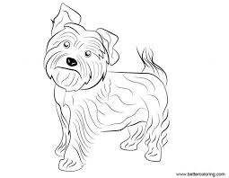 Free yorkie puppy coloring pages yorkie coloring pages black and white free printable pages free yorkie puppy coloring #96941. Free Yorkie Puppy Coloring Pages Yorkie Dog Coloring Pages Free Printable Coloring Pages Yorkie Free Puppy P Puppy Coloring Pages Dog Coloring Page Sketch Free