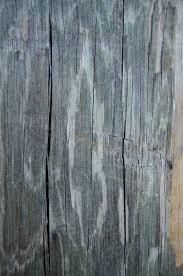 wood grain texture. Wood Grain Texture 5