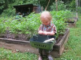 encourage a garden helper