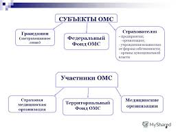 Презентация на тему Медицинское страхование в Российской  8 88 СУБЪЕКТЫ ОМС