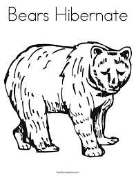 Small Picture Hibernating Bear Coloring Page Coloring Page Hibernation Bear