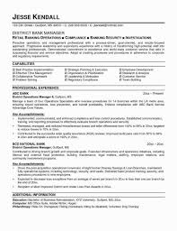 Banking Professionals Cv Cover Letter Loan Officer Samples Of Free
