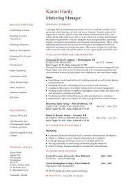 Resume For Marketing Director Marketing Manager Resume Samples