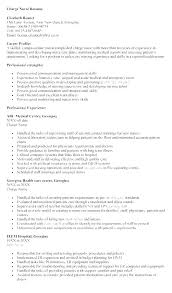 Er Charge Nurse Sample Resume Interesting Charge Nurse Resume Charge Nurse Resumes Rn Charge Nurse Resume