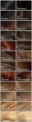 Clairol Perfect 10 By Nice N Easy Hair Color 005a Medium