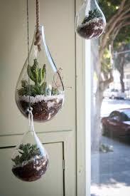 hanging glass orb terrarium glass u planters terrariums cape townrhglassgardenscoza terrarium globe i think actually