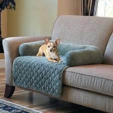 dog blanket couch sofa design cover for ideas pet furniture covers that cute simple casual microfiber a48