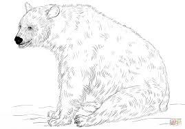 Black Bear Sitting coloring page | Free Printable Coloring Pages