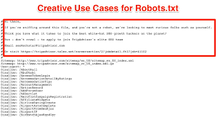 critical mistakes in your robots txt