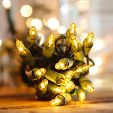 However, you can execute it in the xp mode (virtual pc) of windows 7 if necessary. 35 Yellow Christmas Lights 5 Inch One Plug Green Wire