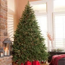 Classic Pine Full Pre-lit Christmas Tree | Hayneedle