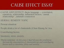 the essay writing process academic skills units and damon  cause effect essay
