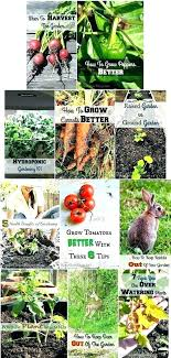 gift ideas for gardeners gifts gardener garden that every would love unusual vegetable gar