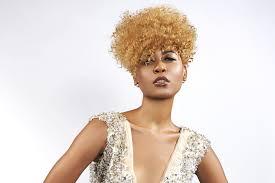 Coiffure Afro La Coloration Des Cheveux Crépus