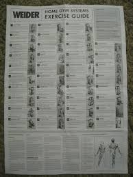 Weider Pro 4300 Exercise Chart Download Weider Pro 8900 Workout Chart Thread Fs Home Gym Gym