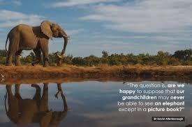 David Attenborough Poster Quote Conservation David Attenborough