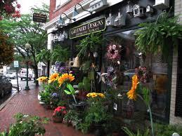 Greenery Designs Amesbury Ma Looking Up In Amesbury Massachusetts Lidancie Arts