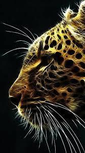 Download Animal Iphone Photos - Best ...