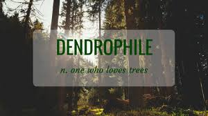 Word Of Nature Nature Word Of The Month September 2017 Dendrophile Green Acorns