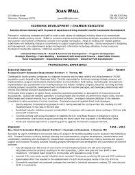 Resume For Non Profit Job Profit Executive Resume 2
