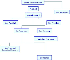 Association Organizational Chart Organization Chart Malaysia Chinese Tourism Association