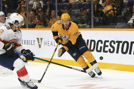 Nashville Predators Vs Florida Panthers Game Preview 11 30