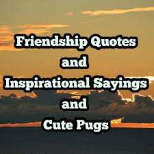 Friendship Quotes And Inspirational Sayings And Cute Puppies Home