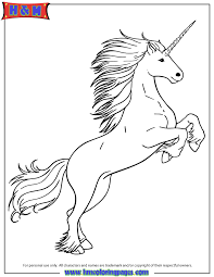 Small Picture White Unicorn Coloring Page H M Coloring Pages