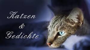 Gedichte Katzen Sind Poesie